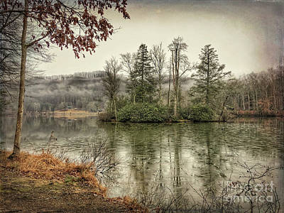 Photograph - Island Of Trees At Hungry Mother State Park by Kerri Farley