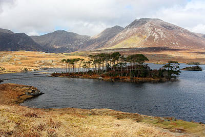 Connemara Photograph - Island Of Trees In A Bare Connemara Landscape by Pierre Leclerc Photography