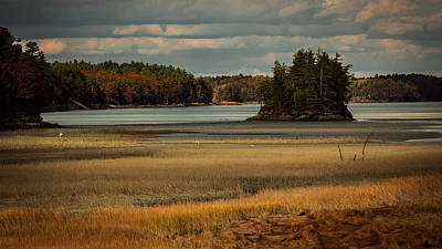 Island On The Lake Art Print