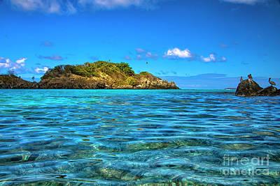 Photograph - Island Paradise by Mariola Bitner