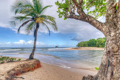 Photograph - Island Paradise by Nadia Sanowar
