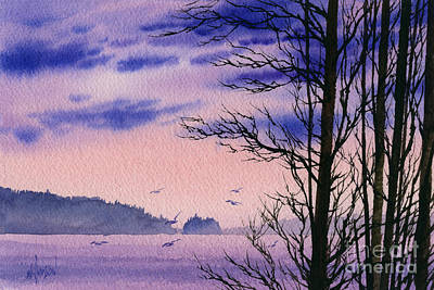 San Juan Painting - Island Point by James Williamson