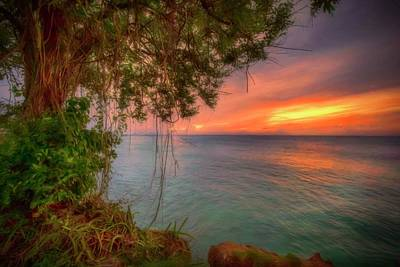 Photograph - Island Sunset by Nadia Sanowar
