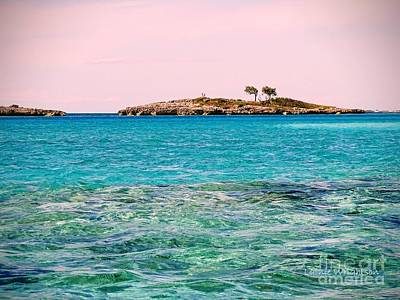 Photograph - Island Tree Couple by Lainie Wrightson