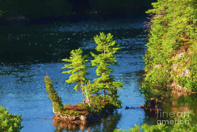 Photograph - Island With Cedar And Pine Trees by Les Palenik