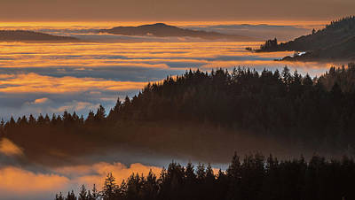 Photograph - Islands In The Fog  by Janet Kopper
