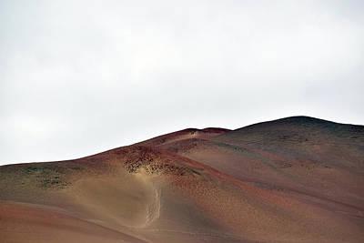 Photograph - Islas Ballestas No. 7-1 by Sandy Taylor