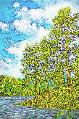 Digital Art - Isle Of Pines - Nederland Colorado by Joel Bruce Wallach