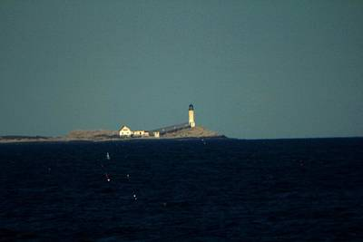 Photograph - Isle Of Soals Up Close by Robert Morin