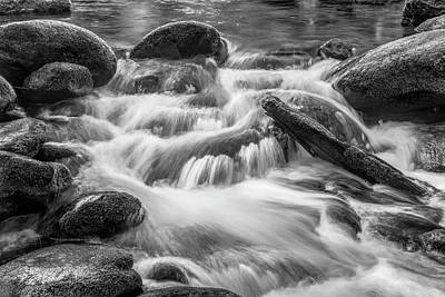 Photograph - Isolated In The Smokies by Jon Glaser
