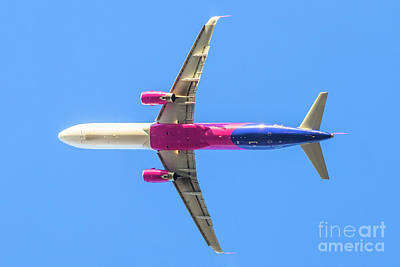 Photograph - Isolated Pink Airplane by Benny Marty