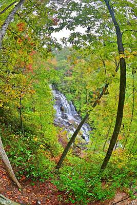 Photograph - Issaqeena Falls Sc Vertical by Lisa Wooten