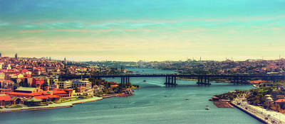 Photograph - Istanbul by Lilia D