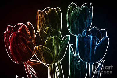 Photograph - It Is A Neon, Rainbow Kind Of Day by Sherry Hallemeier