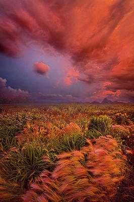 Photograph - It Is Only In Sorrow Bad Weather Masters Us by Phil Koch