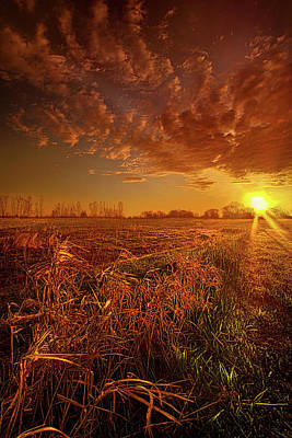 Unity Photograph - It Just Is by Phil Koch