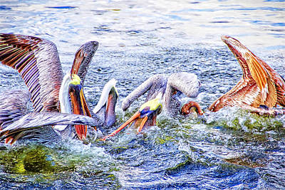 Photograph - It Was A Pelican Freeforall by Alice Gipson