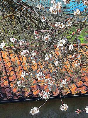 Photograph - Italian Almond Blossom by Dorothy Berry-Lound