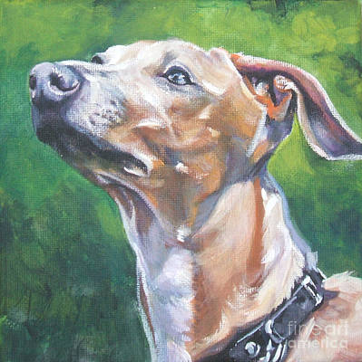 Painting - Italian Greyhound by Lee Ann Shepard