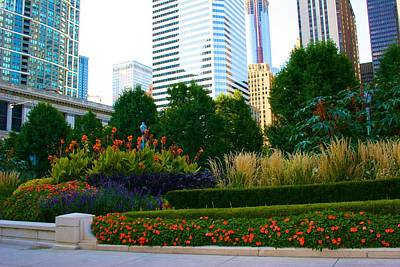 Photograph - The Park In Chicago by Polly Castor