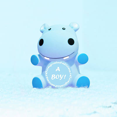 Photograph - It's A Boy Hippo by Terri Waters