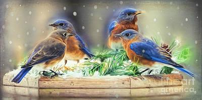 Bluebird Digital Art - It's A Family Affair by Tina LeCour