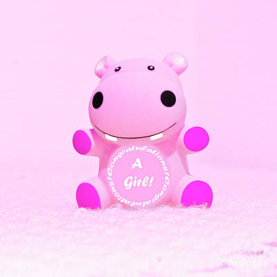 Photograph - It's A Girl Hippo by Terri Waters