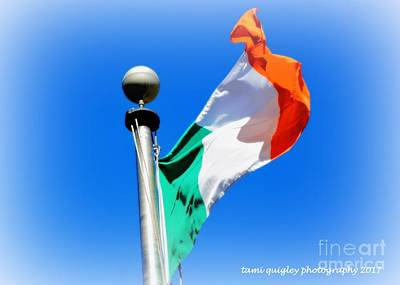 Photograph - It's A Great Day For The Irish by Tami Quigley