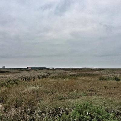 Marsh Photograph - It's A Grey Day In North Norfolk Today by John Edwards