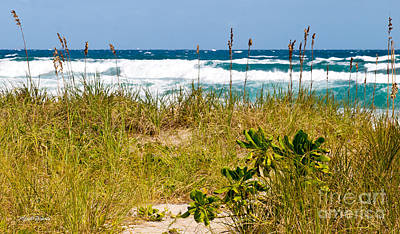 Delray Beach Photograph - Its A Shore Bet by Michelle Wiarda-Constantine