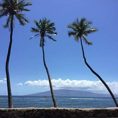 Photograph - It's Aloha Friday!!! #maui #mauihawaii by Darice Machel McGuire