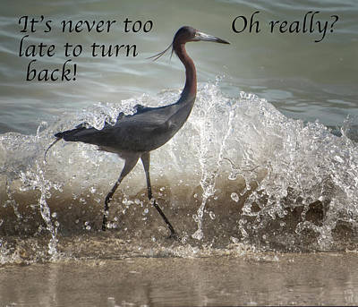 Photograph - It's Never Too Late To Turn Back by Gary Slawsky