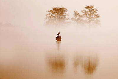 Waterscape Photograph - It's Oh So Quiet by Roeselien Raimond