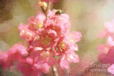 Photograph - It's Spring - Bring On Spring Series by Andrea Anderegg