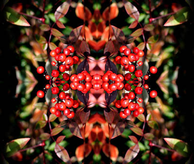 It's The Berries Abstract Art Print
