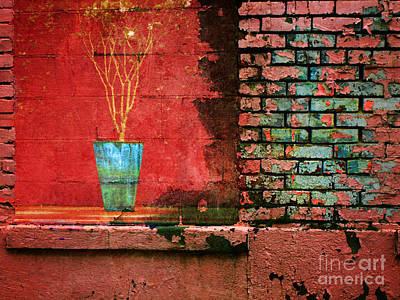 Photograph - It's Time For A Change by Tara Turner