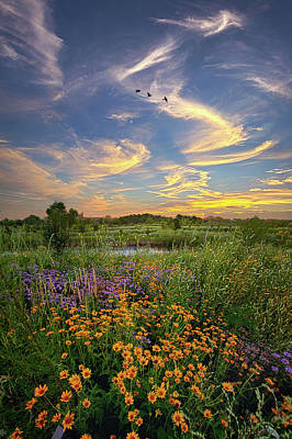 Photograph - It's Time To Relax by Phil Koch