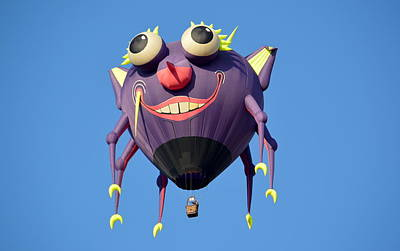 Photograph - Itzy Bitzy Spider by AJ Schibig
