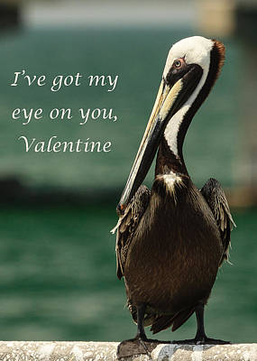 Photograph - I've Got My Eye On You Valentine by Joni Eskridge