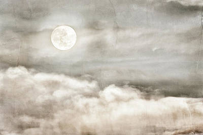 Photograph - Ivory Moon by Dianna Lynn Walker