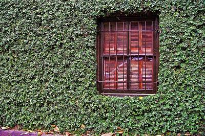 Photograph - Ivy House by JAMART Photography