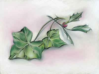 Pastel - Ivy Leaves And Holly by MM Anderson