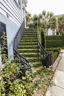 Photograph - Ivy Stairwell In Charelston  by John McGraw