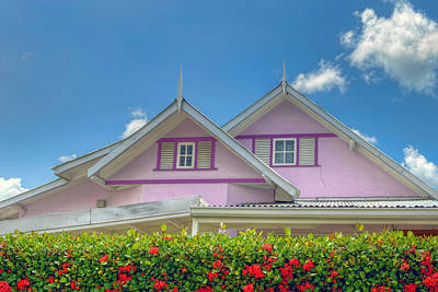Photograph - Ixora House by Nadia Sanowar