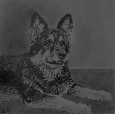 Painting - Izzy by Vera Smith