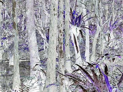 Photograph - J-lintz - Swampscape No. 2 by John Hintz