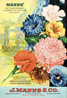 Baltimore Drawing - J. Manns Seed Catalog With Illustration by Vintage Design Pics