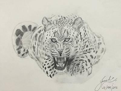Cheetah Drawing - Cheetah by Junaid Murtuza