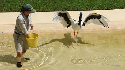 Photograph - Jabiru Bird 2 by Gary Crockett