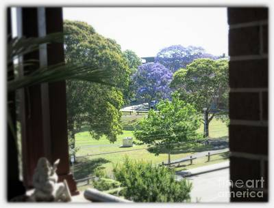 Photograph - Jacarandas In Spring by Leanne Seymour